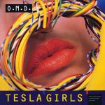 tesla_us_12
