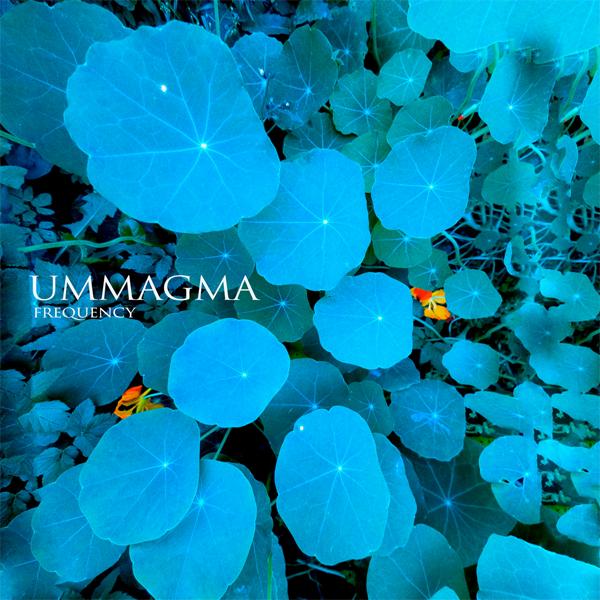 ummagma_freq_600